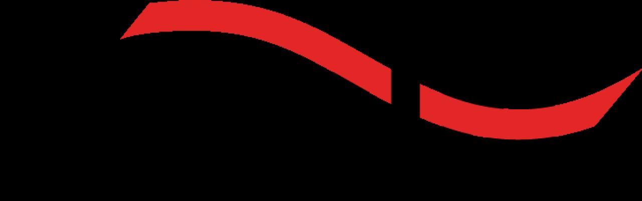 kemin-logo